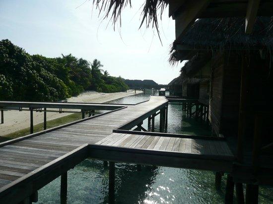 Conrad Maldives Rangali Island : our villa