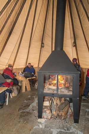 Arctic Adventure Tours: Coffee and Cake by the fire