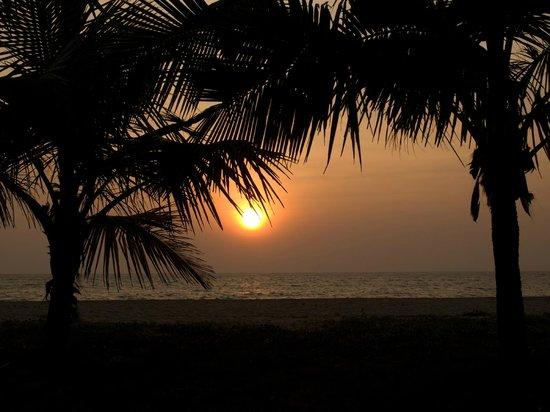 Marari Beach Resort : Sunset
