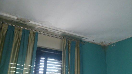 HL Hotel Campidoglio : Well.. mold :/