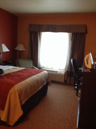 Comfort Inn & Suites Orange: Small king room but clean!