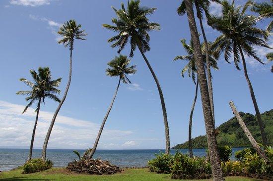 Lalati Resort & Spa: Вид из бара