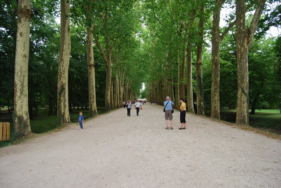 Schloss Chenonceau: The long walk to the Chateau, I enjoyed it as part of the experience - others may not