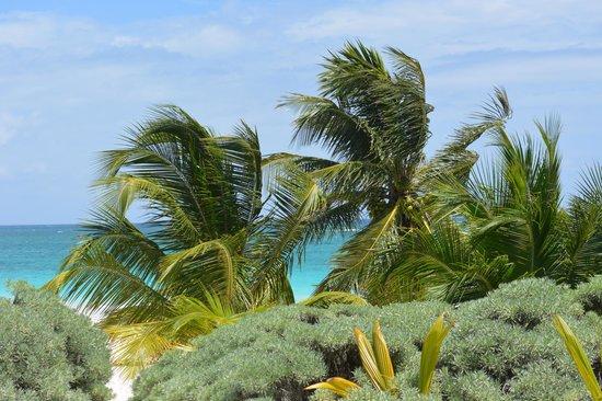 Cabanas Zazilkin: la mer des caraibes vu du site