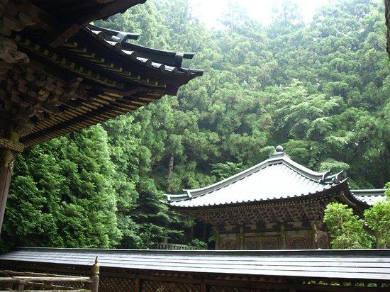 Tokugawa's Mausoleum : Togukawa Mausolée 2