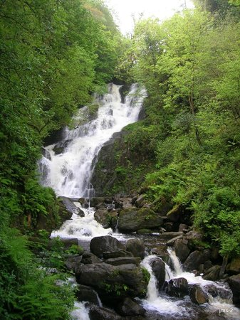 The Killarney Park Hotel : Torc Waterfall