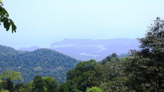 Gunung Raya: View from the top.