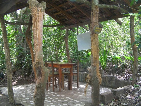 La Mariposa Spanish School and Eco Hotel: Many classrooms look like this