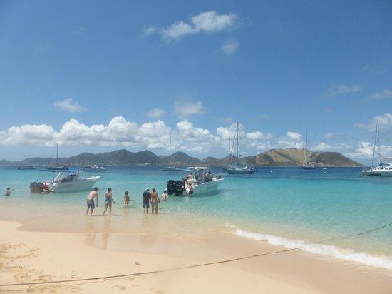 Captain Alan's Three Island Snorkeling Adventure: Snorkel with the Turtles at Tintamarre