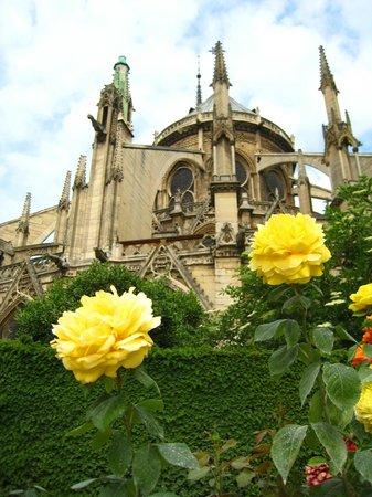 Timhotel Paris Gare de l'Est: Cathédrale Notre Dame de Paris