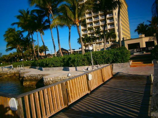 Paradise Island Harbour Resort All Inclusive: Hotel