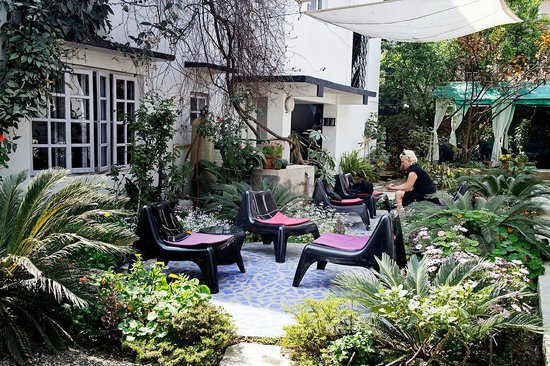 Tings Lounge Hotel: Front garden