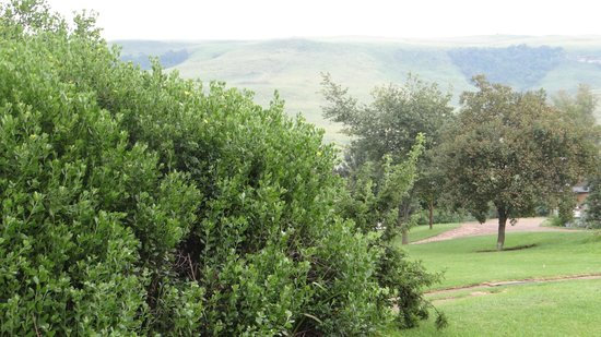 Montusi Mountain Lodge : Well tended grounds