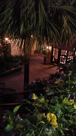 Avenue Plaza Resort: courtyard