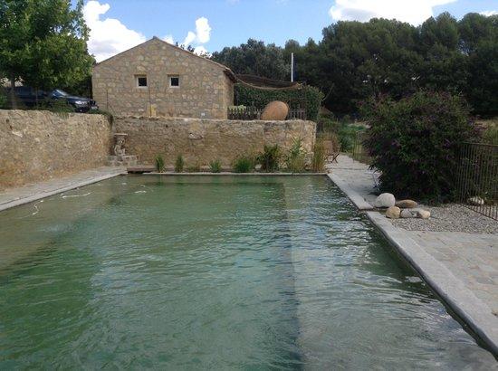 A la Claudy : piscine naturelle