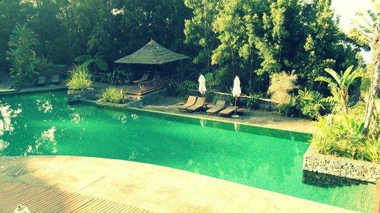 Choupana Hills Resort & Spa: Zwembad
