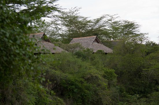 Mara Simba Lodge: lodge