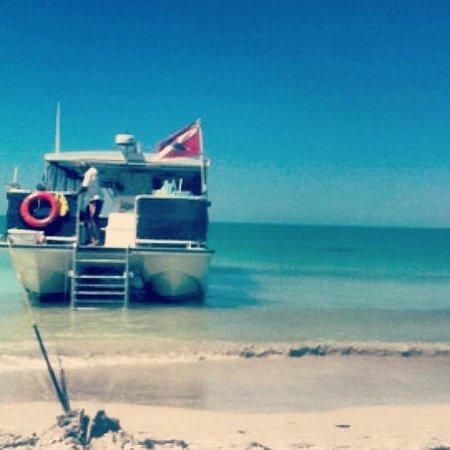 Island Boat Adventures : Calypso Cat boat