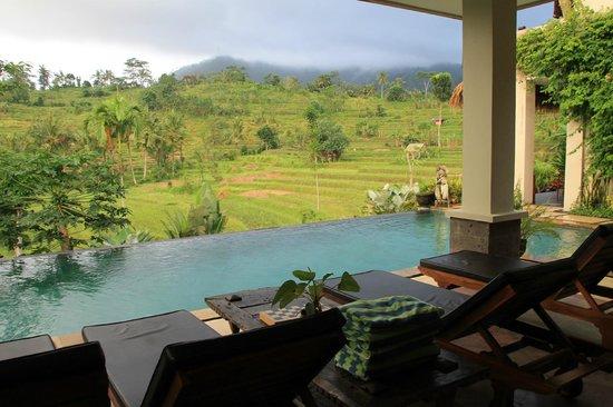 """Surya Shanti Villa: vue des chambres """"Agung view"""""""