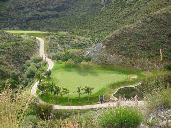 Villa Padierna Palace Hotel: golf