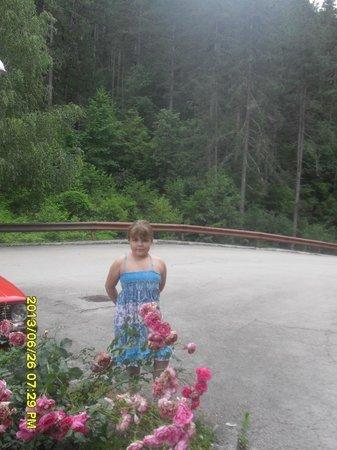 Vilina Vlas: у входа в отель