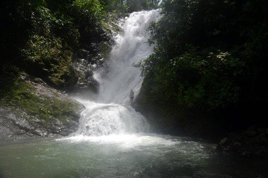 Jungle Tours Costa Rica
