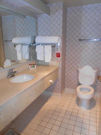 Ramada Plaza Hawthorne/LAX: Bathroom