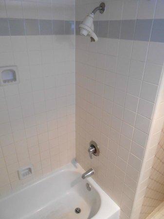 Ramada Hawthorne/LAX: Bathroom shower
