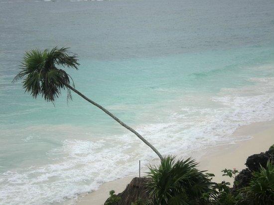 Cabanas Zazilkin: plage depuis le site de Tulum