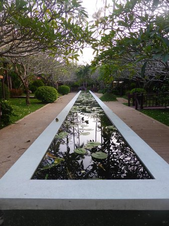 Imperial Boat House Beach Resort, Koh Samui: One of the reflecting pools.