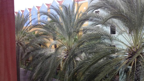 Renaissance Curacao Resort & Casino: Paltrees from the innersquare at the Fort