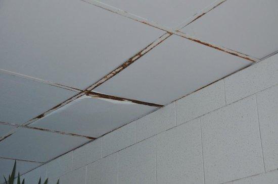 Hotel Bringue: Plafond piscine