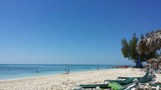 Viva Wyndham Fortuna Beach: Viva March 2014