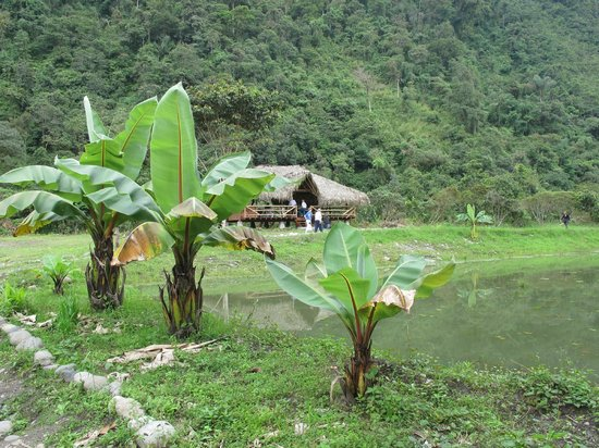 Rio Quijos Eco Lodge : Shelter near the river to relax