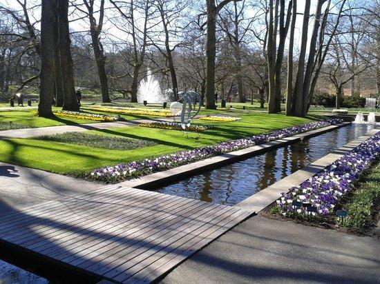 Renaissance Amsterdam Hotel: Keukenhof gardens