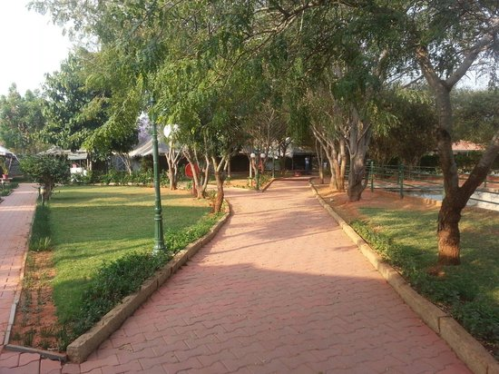 Olde Bangalore Hotel & Resort : Path way