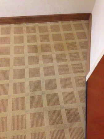 Comfort Suites Vero Beach: Stains on carpet by door