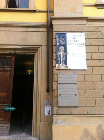 University of Florence Natural History Museum : Museo di Storia Naturale dell'Università di Firenze, ingresso