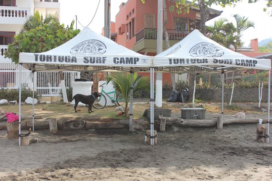 Hotel Perico Azul: Surf Camp