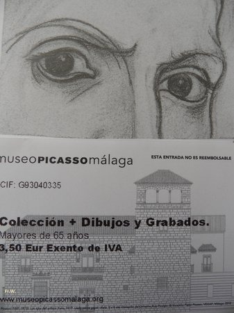Musée Picasso de Malaga : Het entreebewijs .