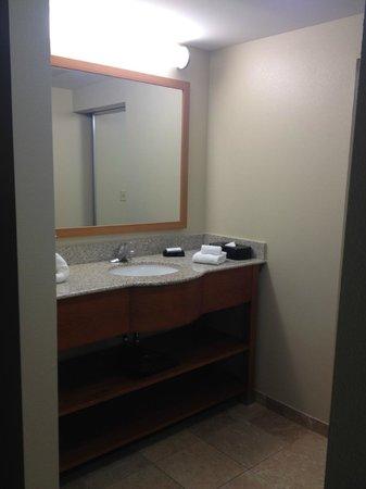 Hampton Inn & Suites St. Louis at Forest Park: Bathroom