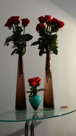 La Casa del Atrio: Roses in our room