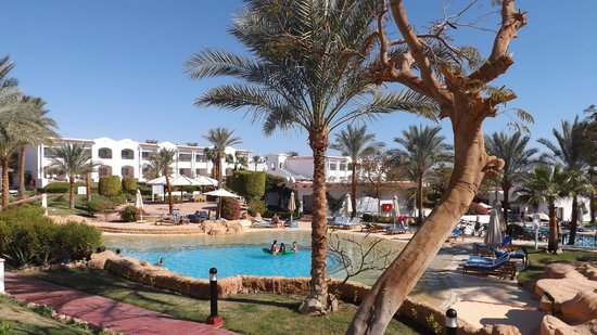 Hilton Sharm Dreams Resort: The View of the pool from our room