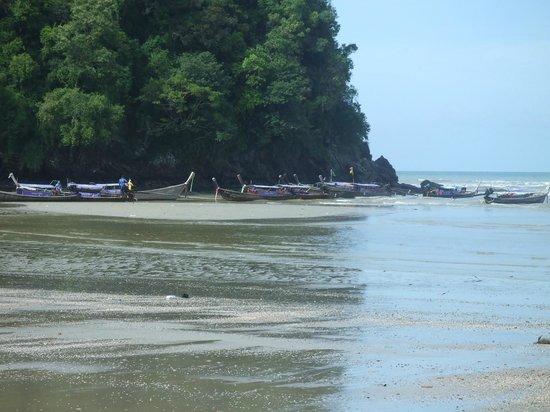Srisuksant Resort: spiaggia