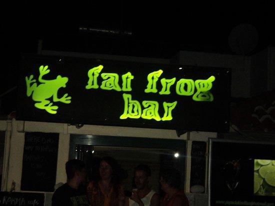 Papadakis Villas : The fat frog