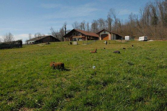Farm House Altana del Motto Rosso: La struttura