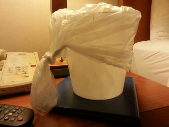 "Fairfield Inn & Suites Columbus East: Might be hard to see, but there are little hairs on the bag and ""ice bucket""."