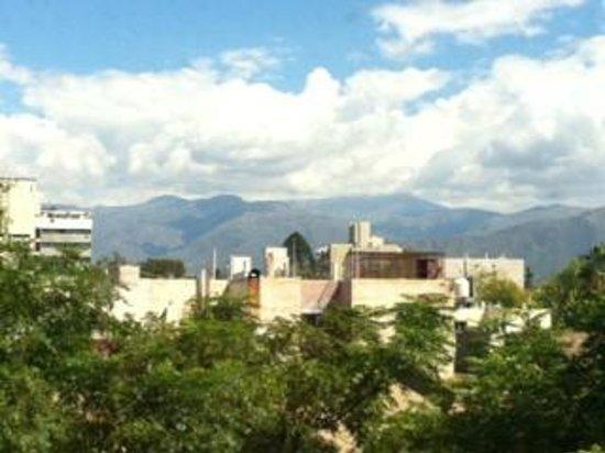 Park Hyatt Mendoza : Vista do Quarto