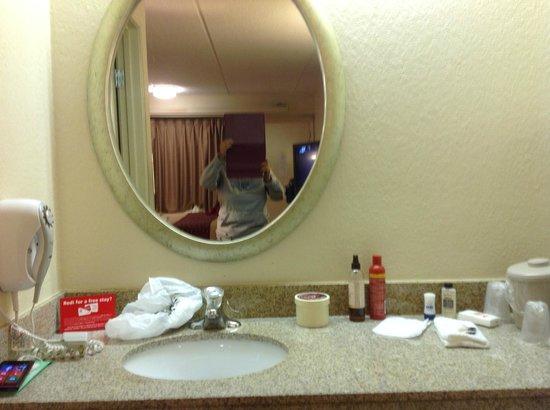 Red Roof Inn North Charleston: bathroom/sink