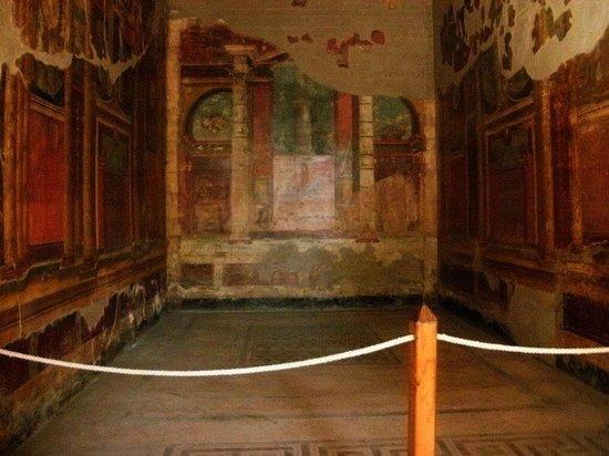 Oplonti Villa di Poppea Ruins: Villa di Poppea particolare